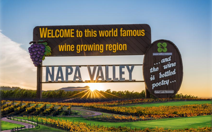 The Elegance of Napa Valley's Wine Country